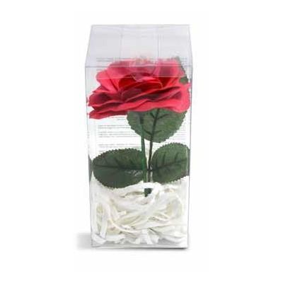 Coccolino aviváž Sensitive 1 L